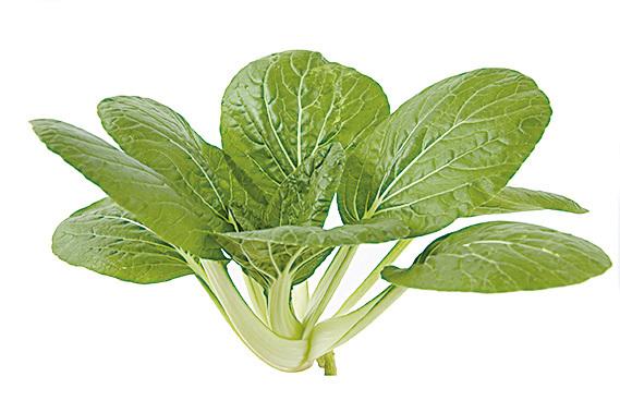 油菜有滋潤皮膚的美容功效。