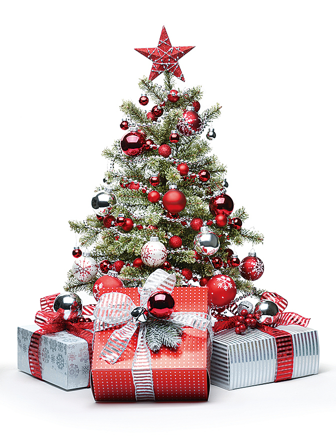 聖誕樹(Fotolia)