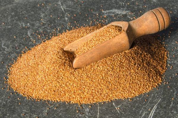 非洲的特殊穀類苔麩(teff),被認為營養價值很高,是深具商業潛力的穀物。(shutterstock)