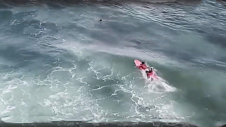 衝浪選手救落海對手  總統感謝選擇人性 放棄金牌