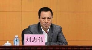 廣東省委第六巡視組長劉志偉落馬