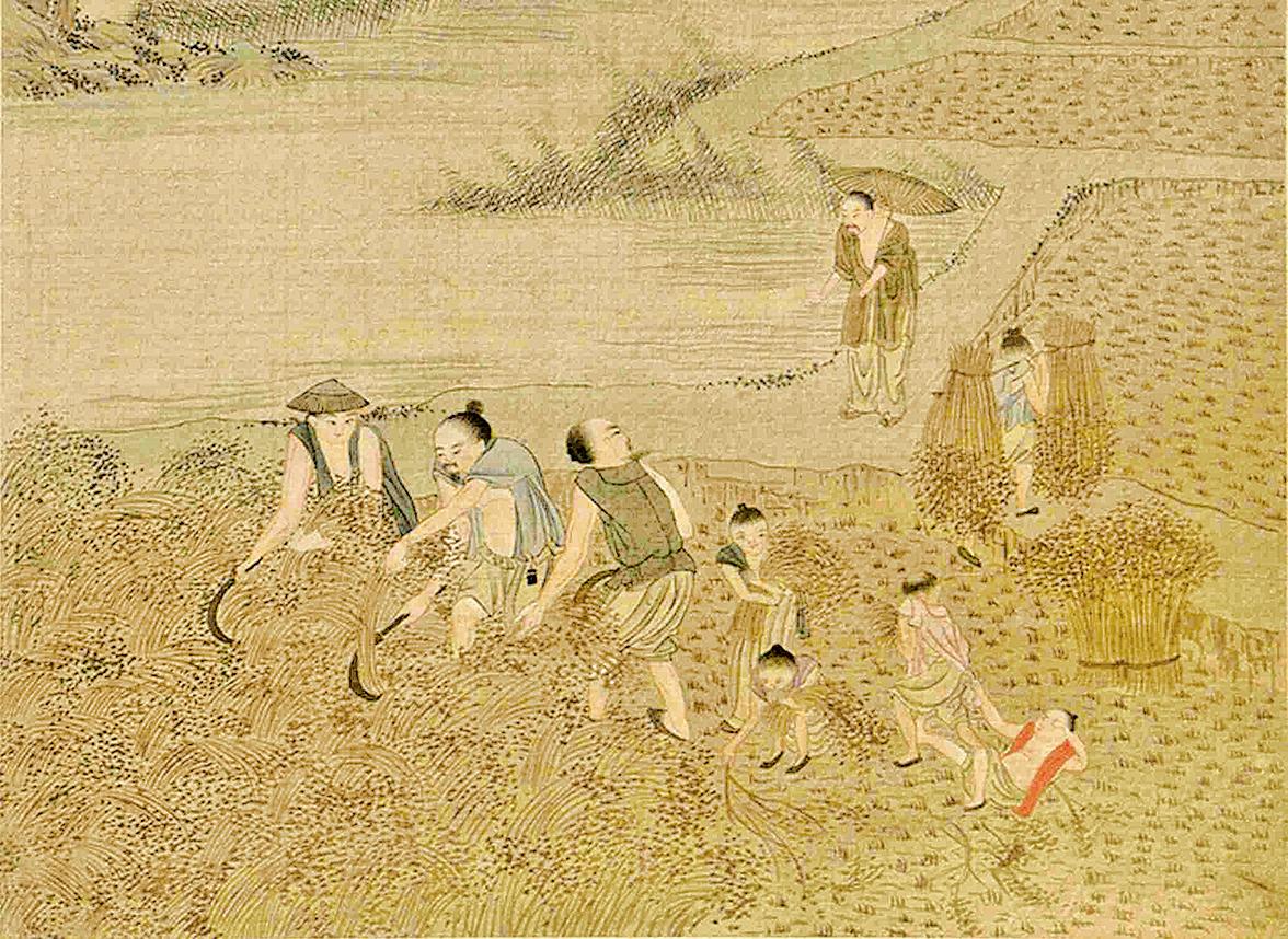 趙昇和同輩一起在田間收穀子,見一個衣裳破爛的人在路邊叩頭討飯。圖爲清焦秉貞《耕織圖》冊(公有領域)