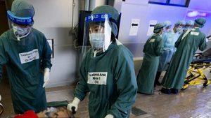武漢爆發未明肺炎  議員促請政府正視武漢肺炎疫情