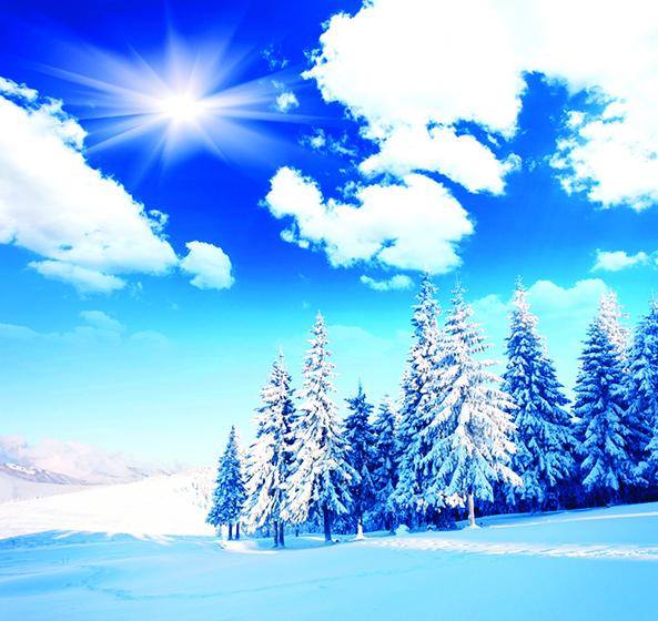 冬至等待春天復甦
