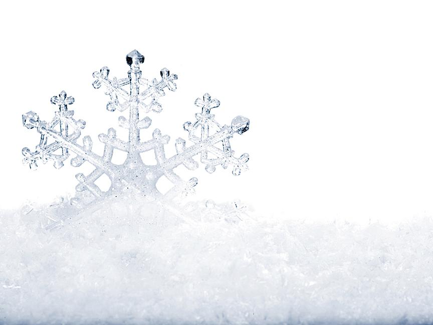 冰花,指水氣遇冷凝結的「花朵」,姿態曼妙,變化萬千。(fotolia)