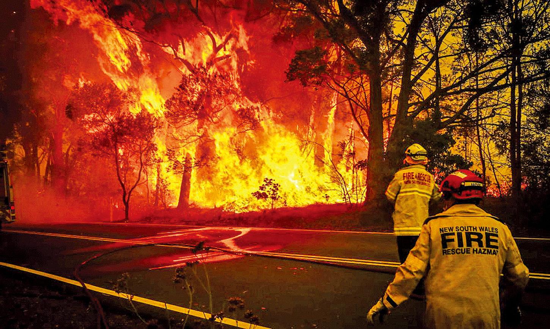 澳洲野火延燒超過2個月,許多野生動物棲地被破壞,截至13日大火已造成28人喪生,燒燬了2,000多棟房子。(Getty Images)