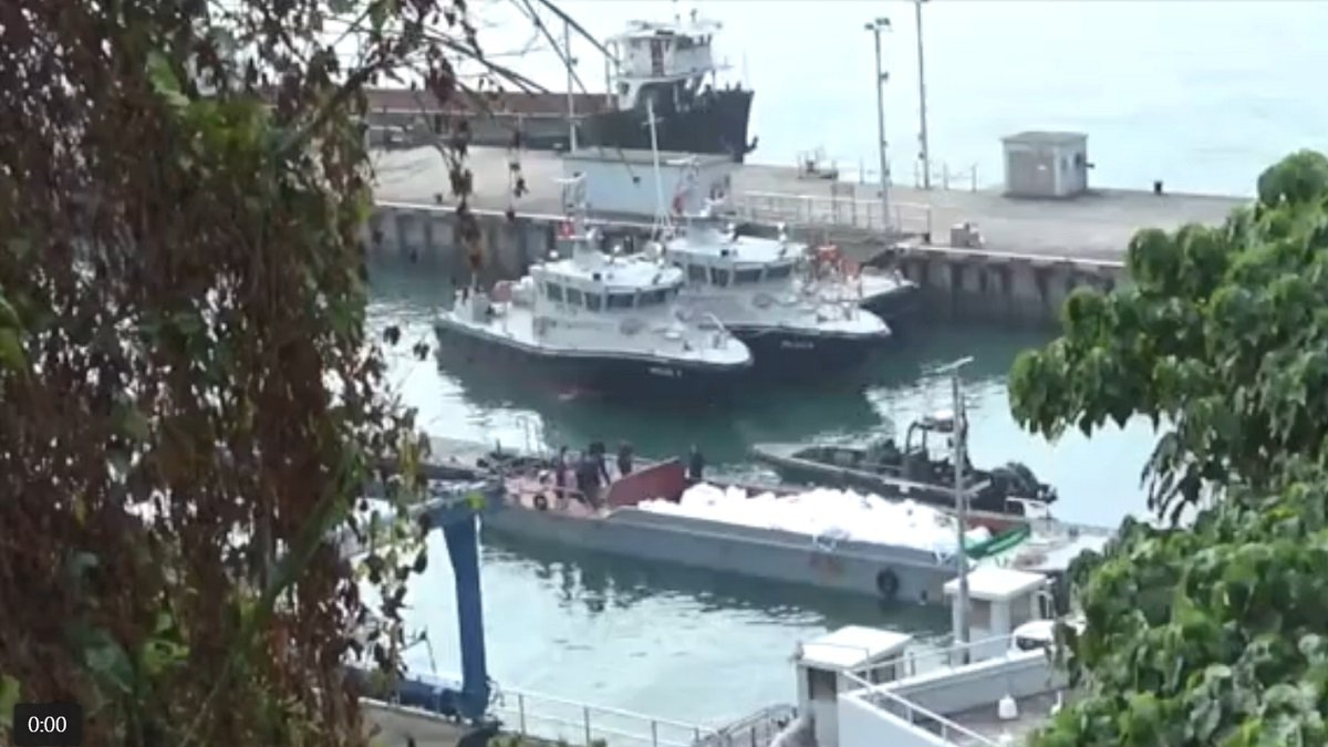 21日9時許, 一艘海關淺水巡邏艇在赤鱲角機場以西的沙洲海面,進行反走私巡邏時,懷疑撞到不明物體後受損翻沉。是次事件導致3名關員殉職,2名關員受輕傷。事件懷疑,是海關巡邏艇撞向走私凍肉的走私船後翻沉。(視頻截圖)