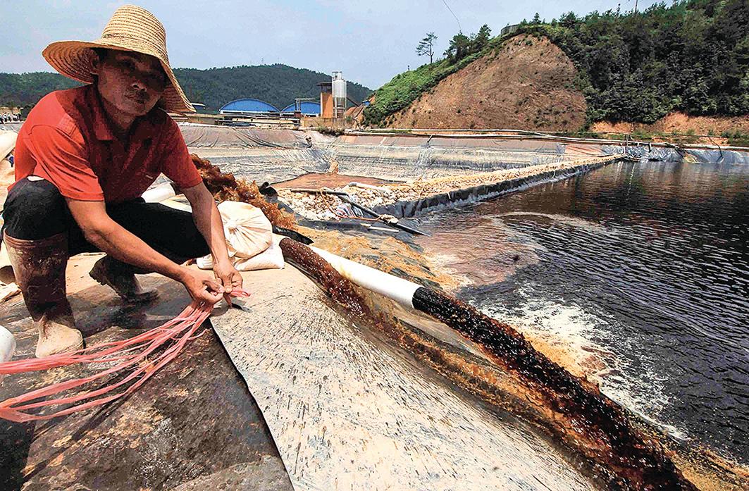 中 國 南 部許多礦業帶來的土壤污染和水污染與農業地帶重疊。圖為紫金礦 業造成污染事件。(STR/AFP via Getty Images)
