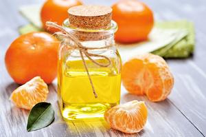 吃橘懷橘 名將名相用人生說故事