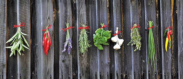 辛辣味蔬菜(pixabay)