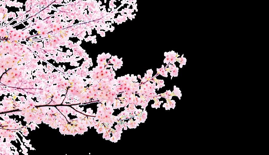【好書精選】六月之雪(四)