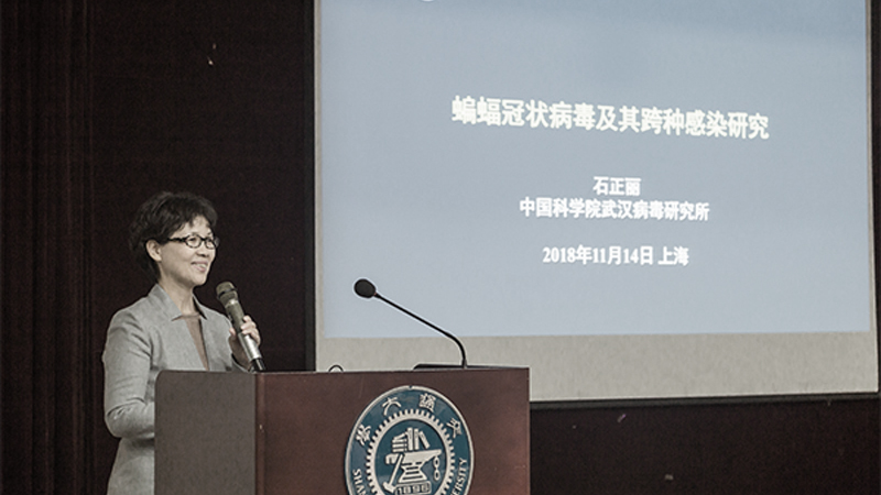 圖為石正麗2018年11月在上海交大演講。(網絡圖片)