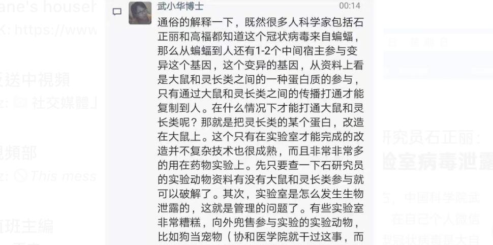武小華公開要求對質石正麗,只有在實驗室才可人工研製。(網絡截圖)