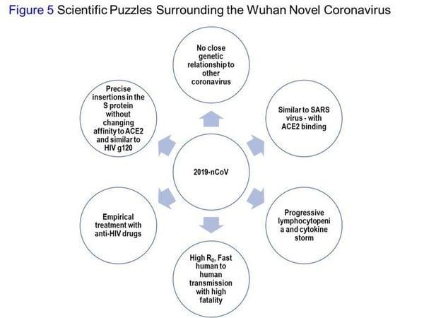圖5:武漢中共病毒的科學難題。