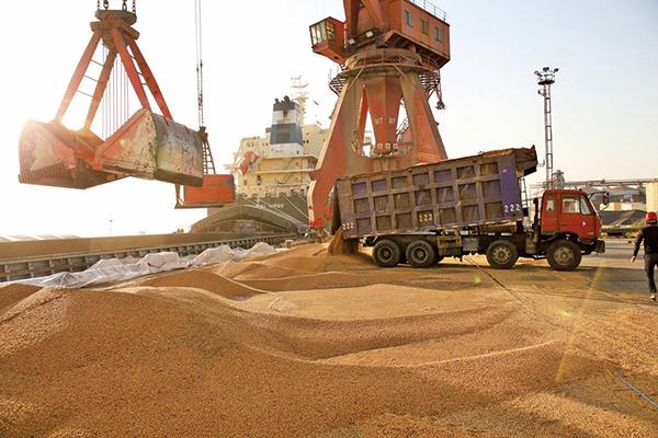 中國是否能執行貿易協議有頗多質疑,圖為美國農產大豆轉運場。(Getty Images)