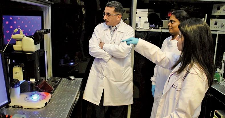 研究人員在利用顯微鏡檢視新型的紙質材料上的多個細胞球體結構。(MOHAMMAD A. QASAIMEH/NYU ABU DHABI)