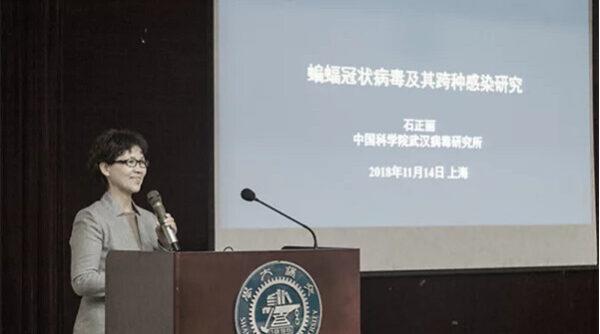 中國科學院武漢病毒研究所研究員石正麗。(網絡圖片)