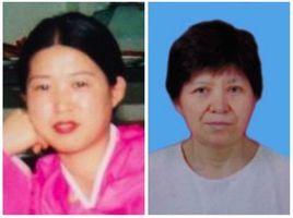 中國朝鮮族法輪功學員被迫害二十年綜述