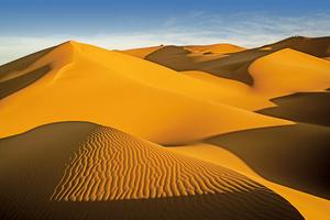 研究:沙丘之間也有聯繫
