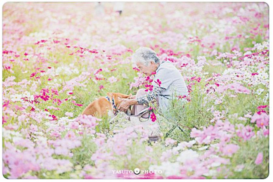 嫲嫲和柴犬的溫馨照片 網友:照片中傳出溫暖的空氣