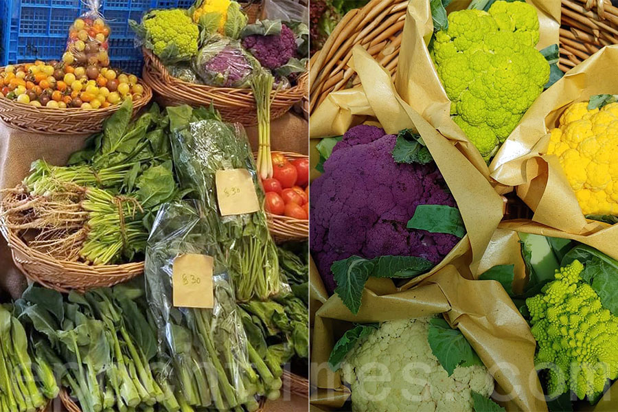 粉嶺坪輋香港有機農場負責人盧祖旭和妻子堅持保持以往的菜價,希望能讓客人吃得滿意、放心。(受訪者提供)