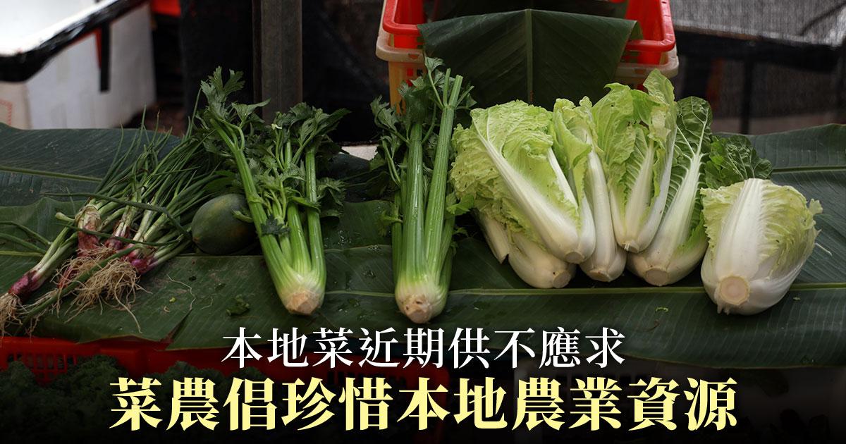本地農產品在武漢肺炎的影響下銷情上漲,多位本地菜農一致認為本地菜是市場的趨勢,提倡市民珍惜本地農業資源。(陳仲明/大紀元)