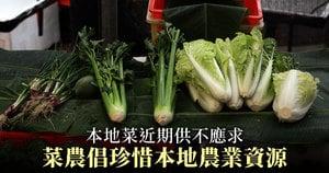 本地菜近期供不應求 菜農倡珍惜本地農業資源