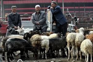 報告:超過100名中國穆斯林加入IS