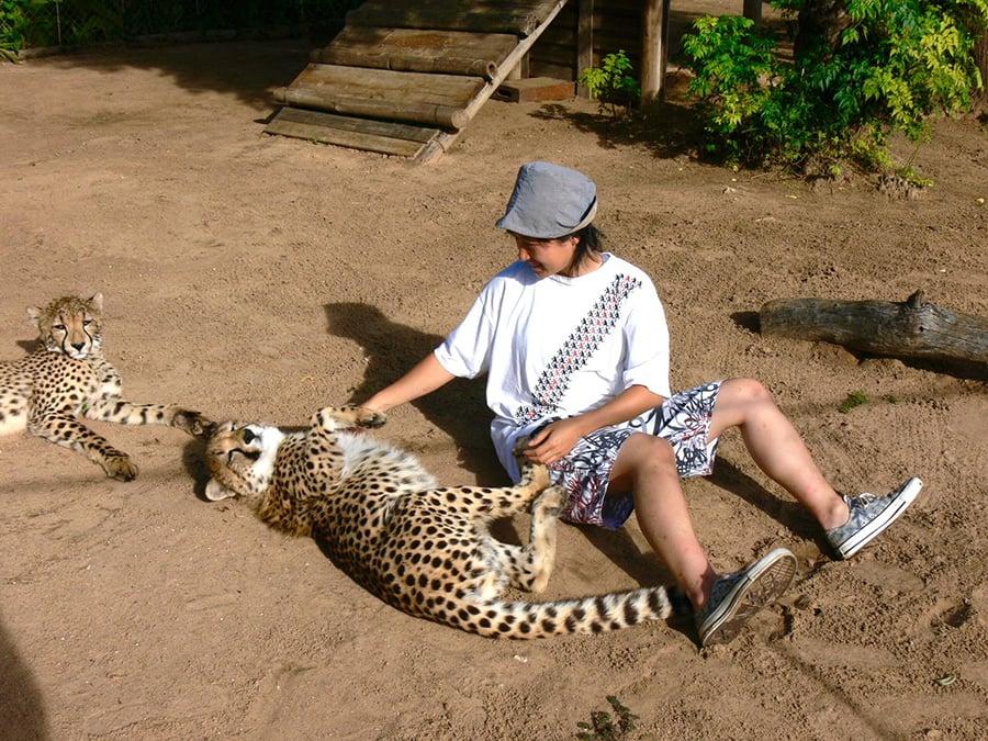 獵豹Duma給Lucci留下了深刻印象,回港後,她決定用畫筆記錄下這頭獵豹寶寶的模樣。(受訪者提供)