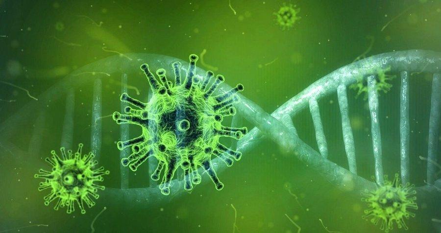 大外宣炒作病毒源頭在美國 陸專家:源頭在武漢