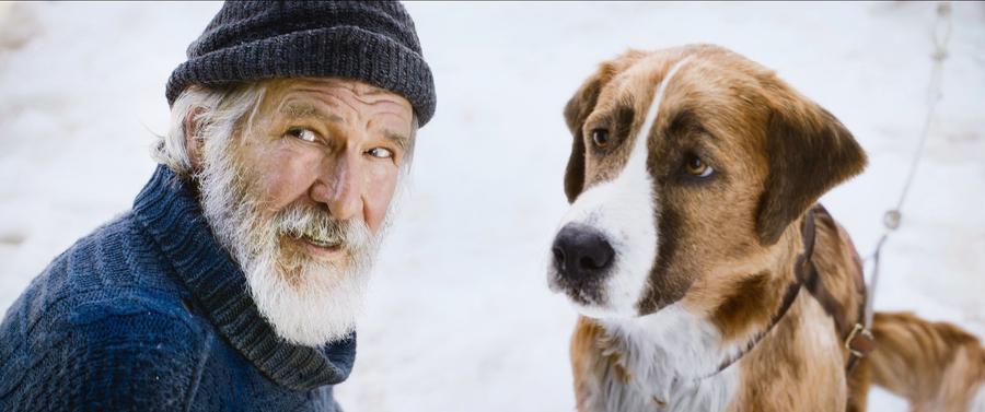 《極地守護犬》 擁有好主人 未必是狗的唯一歸宿