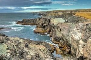 加拿大紐省迷斯塔肯角進入世界遺產名錄