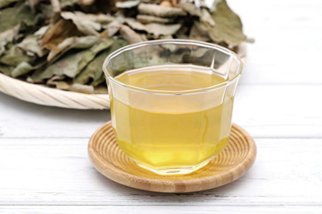 魚腥草茶。