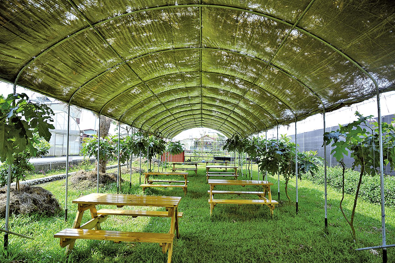 在四面環山的埔里有一處生態農場「可麗開心農場」。