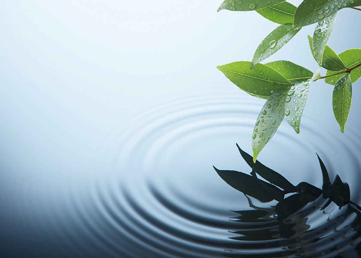 《說文》中的「淑」,指清湛也。叔從水為淑,喻指靜水流深,而非洶湧之波濤(fotolia)