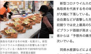 日本鳥取縣美味松葉蟹 價格暴跌
