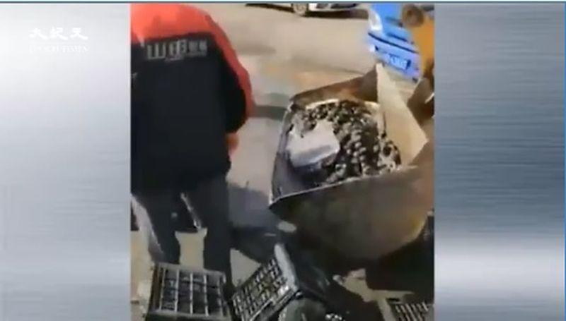 中共病毒疫情衝擊 水果賣不出 批發市場用鏟車倒掉