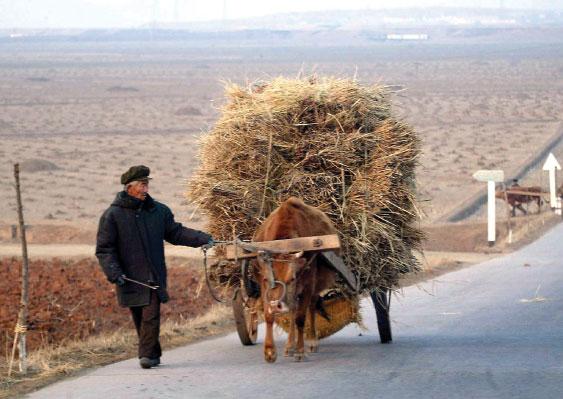 北韓封關後食品短缺,多處出現餓死人慘劇,北韓體制內部透露,「如果疫情長期化,可能餓死的人會超過死於疫情的。」(AFP)