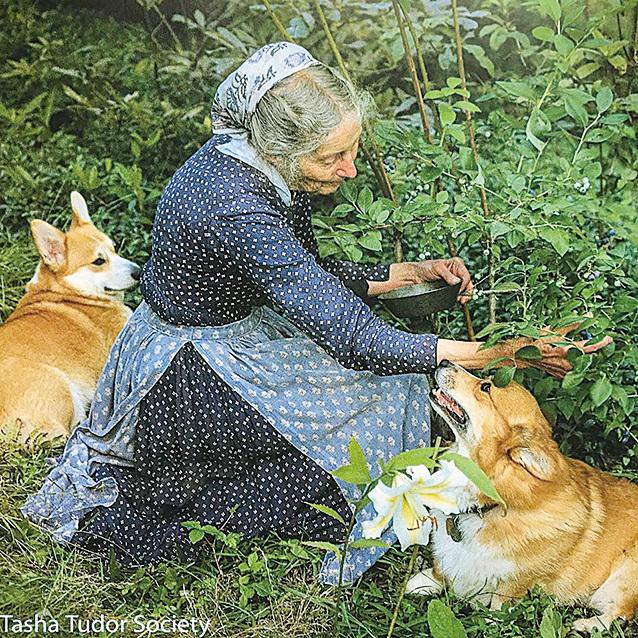 塔莎杜朵採摘自己種的果實。(Tasha Tudor Society FB)