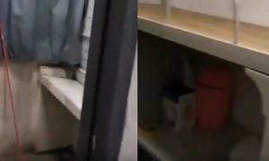【現場影片】留學生回國被隔離在簡陋宿舍