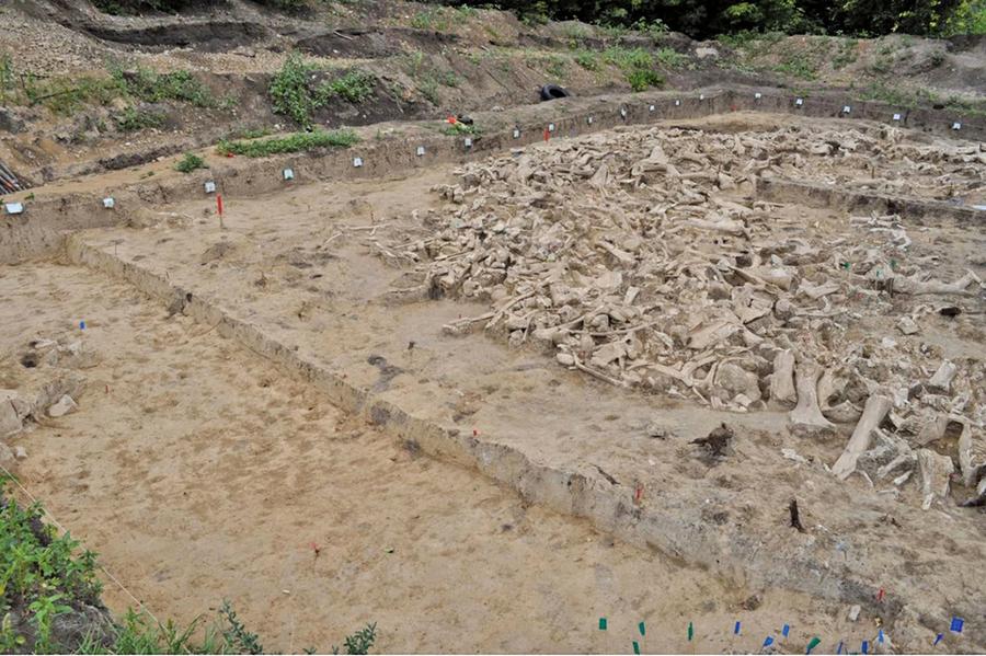 考古發現猛獁象骨頭組成的神秘環形結構