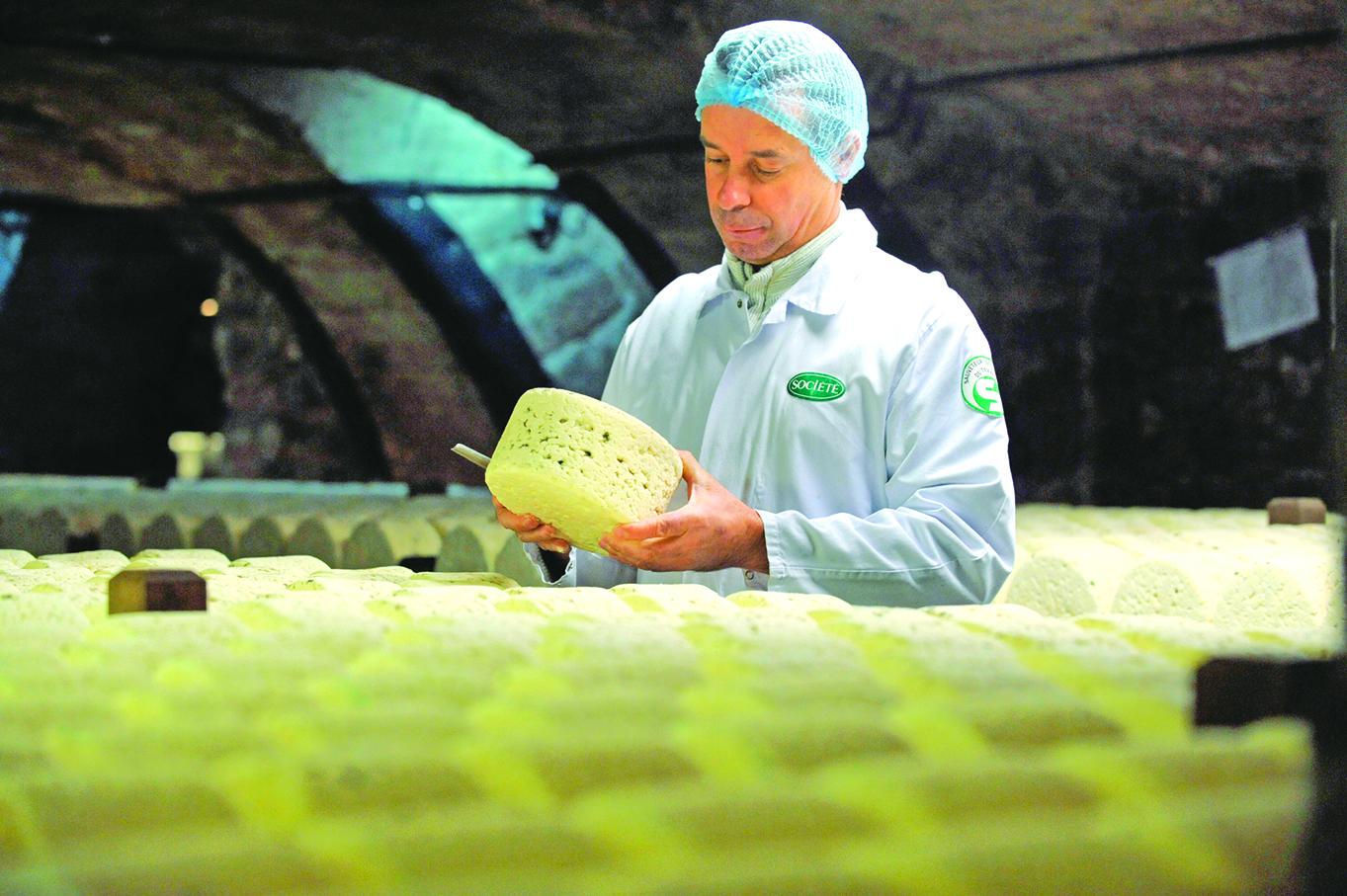 現代的法國洛克福耳村芝士地窖中,工匠正在檢視青黴的生長狀況。