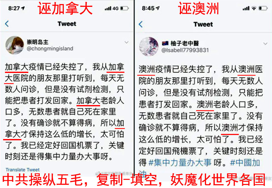 圖1:2020年3月,海外自媒體搜索到大量雷同的謠言,被揭露為中共五毛的統一行動,禍亂各國。(圖:Twitter 截圖)