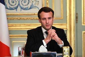 法國染疫死亡破千 醫聯會主席:遠不止這些