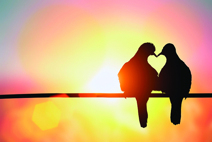 【人生絮語】愛情的預設值