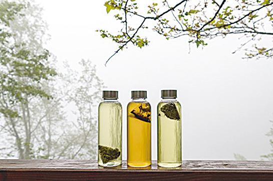 紅茶、青茶、綠茶:營養區別大公開