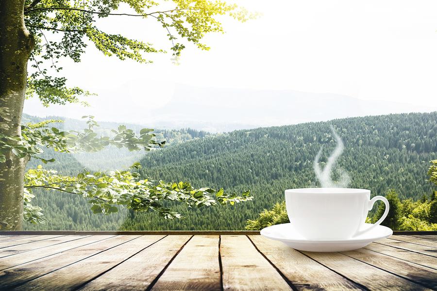 喝對茶才養生 六大類茶哪種最適合你?