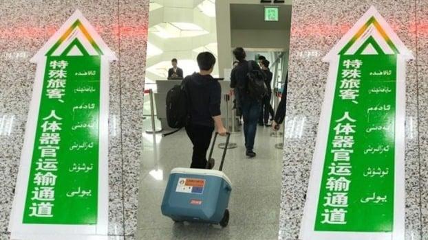 圖為新疆機場的特殊旅客、人體器官運輸通道。(網絡圖片)