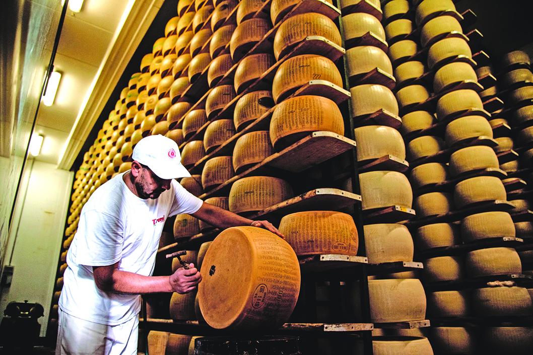 芝士工匠會拿著一個小錘子,在乳酪塊的周身敲打,用聲音來判斷乳酪的品質。