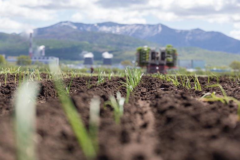 研究:若保護得當 地球土壤可吸收全美碳排放